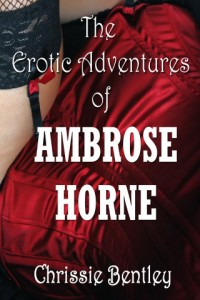 The Erotic Adventures of Ambrose Horne by Chrissie Bentley Review