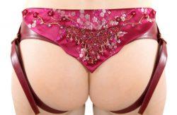 Shiri Zinn Strap On Harness And Ceramic Dildo Review