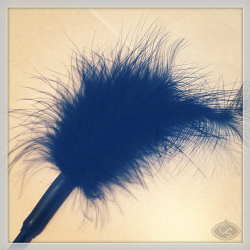 black-feather-tickler
