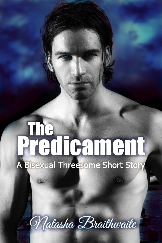 The Predicament: A Bisexual Threesome Short Story (The Proposition)