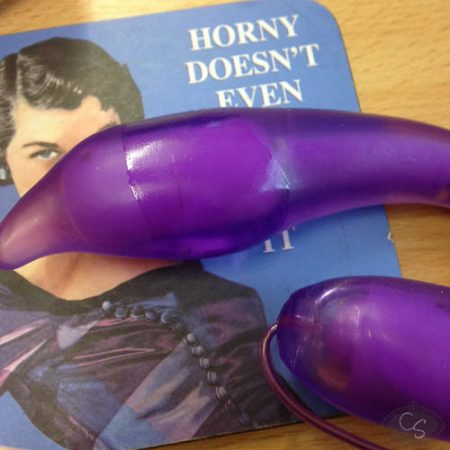 Evolved Novelties Bendable You Too Vibrator Review