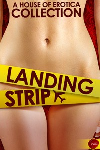Landing Strip free excerpt Megan Morgan