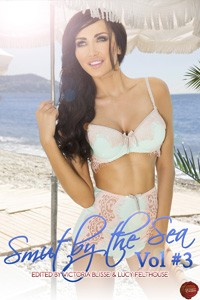 smut by the sea volume 3 megan morgan free excerpt