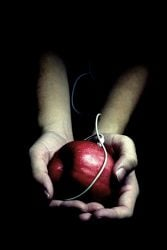 poison apple paranormal halloween spooky