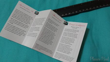Fifty Shades of Grey Spanking Ruler - Pleasure Panel Review-1