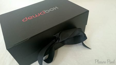 Dewci Monthly Sex Toy Subscription Box Review Pleasure Panel-4