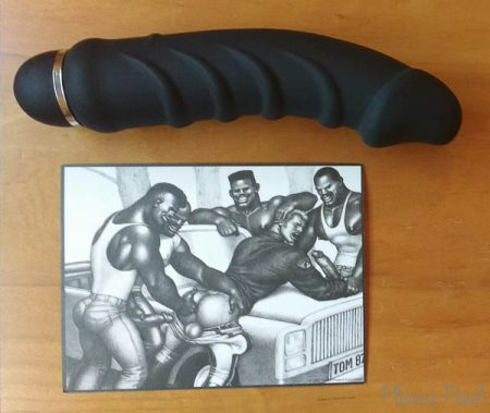 Tom of Finland 5 Speed Silicone Vibe Review