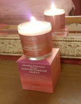 DONA Flirty Blushing Berry Massage Candle Review