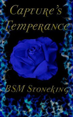 BSM Stoneking Book Reviews