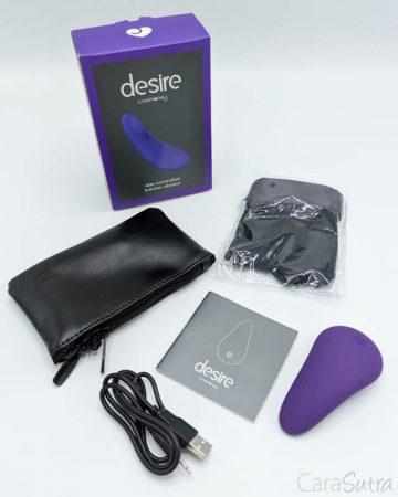 Lovehoney Desire App-Controlled Rechargeable Knicker Vibrator