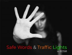 Safe Words And Traffic Lights: How To Say Stop In BDSM